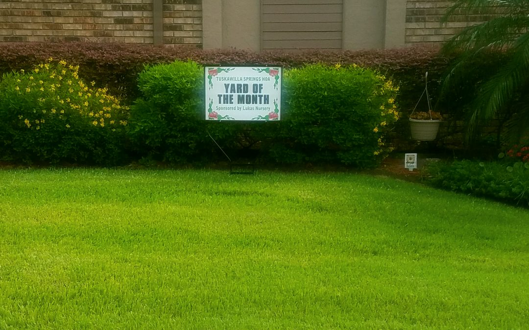 ProGuard Yard Of The Month