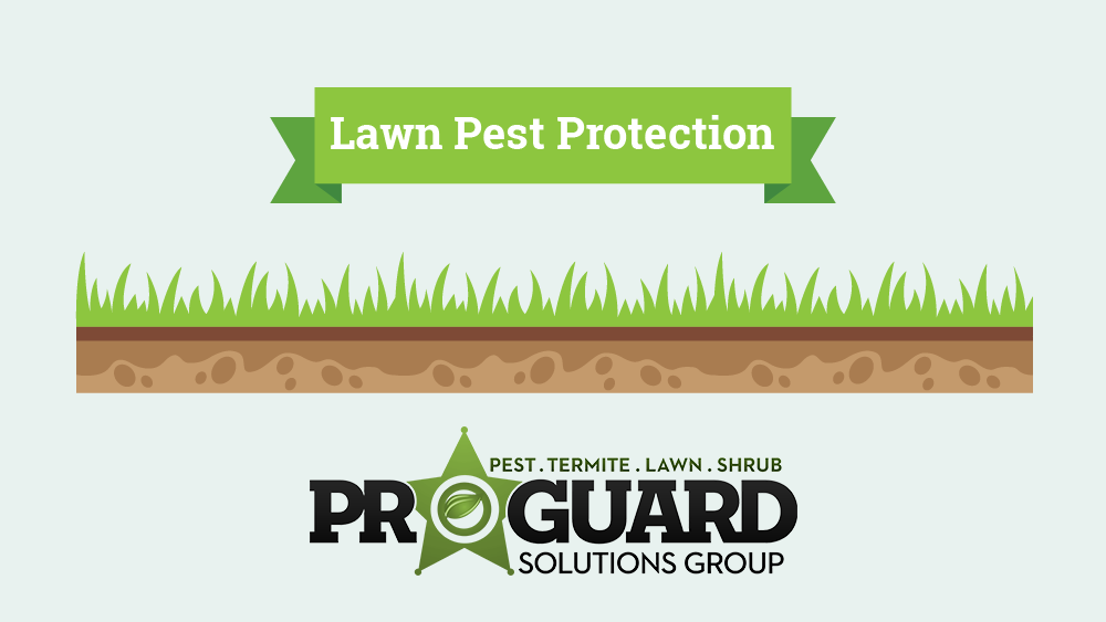 ProGuard Lawn Pest Protection