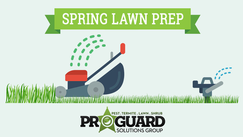 Spring Lawn Preparation In Florida